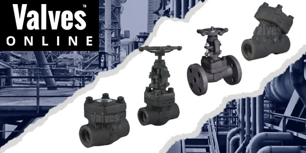 Class 800 Forged Steel Valves