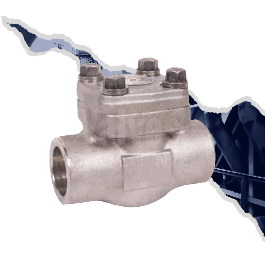 Class 800 Forged Stainless Steel 316L Swing Check Valve