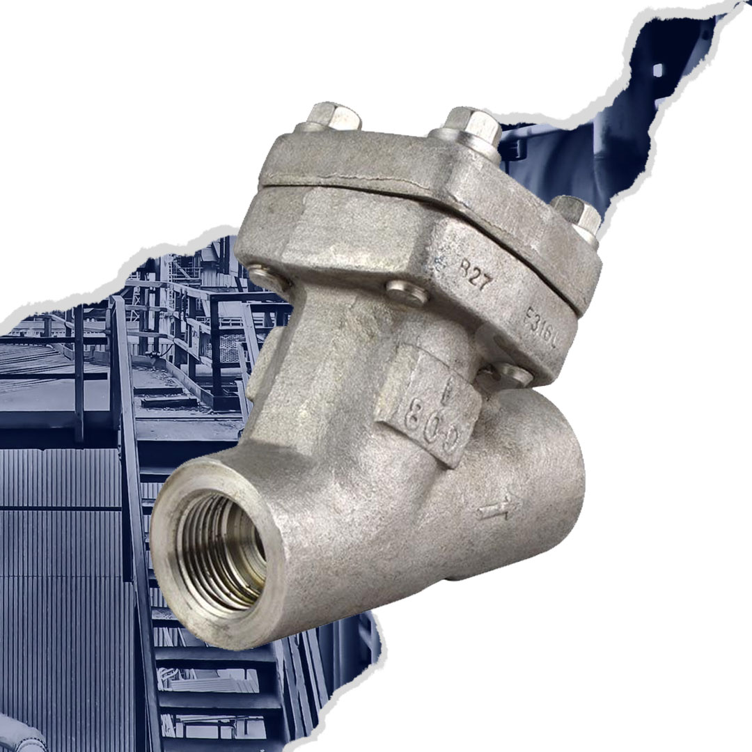 Class 800 Forged Stainless Steel 316L Y Strainer